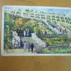 Carmen Sylva Grigore Trandafirescu Constanta - Carte Postala Dobrogea dupa 1918, Necirculata, Printata