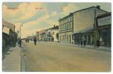 3539 - Teleorman, ALEXANDRIA, Carol Street - old postcard - used - 1910, Circulata, Printata