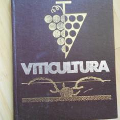 T. MARTIN--VITICULTURA - 1966 - Carti Agronomie