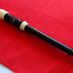 Fluier Altele PROFESIONAL AULOS SERIA 102N- G