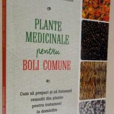 PLANTE MEDICINALE PENTRU BOLI COMUNE, 2016
