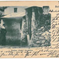 3538 - Litho, Sibiu, SALISTE, Fantana Foltei - old postcard - used - 1903 - Carte Postala Transilvania pana la 1904, Circulata, Printata