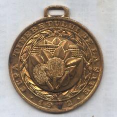 MEDALIA CUPA TINERETULUI DE LA SATE 1972 -TENIS DE MASA LOCUL 1 - Medalii Romania