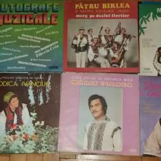 12 discuri vinil Muzica Populara electrecord