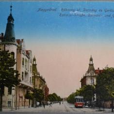 ORADEA (Nagyvarad) - Str. Rakoczy, palatul Darvasy si Gerliczy - 1917 - tramvai - Carte Postala Crisana 1904-1918, Necirculata, Fotografie