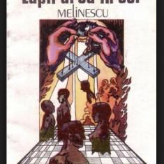 Lupii urca in cer  : roman / Gabriela Melinescu