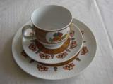 Ceasca cu farfurioara si farfurie prajitura din portelan ROSENTHAL Fine China, Decorative