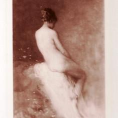 Nicolae GRIGORESCU, NUD, fotografie Stelian, originala, HARTIE ORGANICA