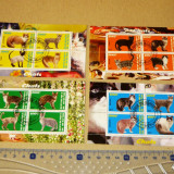 Lot Set Colectie 4 colite PISICI RASE FAUNA ANIMALE 2+1 gratis RBK19847
