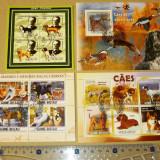 Lot Set Colectie 4 colite CAINI RASE CATEI ANIMALE FAUNA 2+1 gratis RBK19874