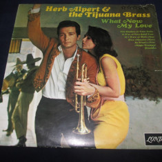 Herb Alpert & The Tijuana Brass ‎– What Now My Love _ vinyl(LP) SUA - Muzica Jazz Altele, VINIL