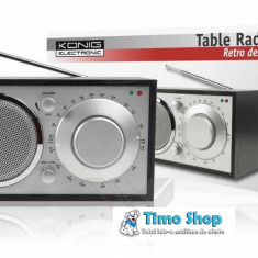 Radio FM design retro HAV-TR11