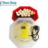 Incubator electric CLEO 5T cu termometru digital - Incubator oua