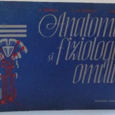 ANATOMIA SI FIZIOLOGIA OMULUI.INDRUMATOR PENTRU ELEVI 1983