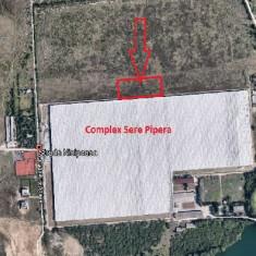 Teren 9.119,20 mp, str. Drumul Nisipoasa, Bucuresti, Teren intravilan