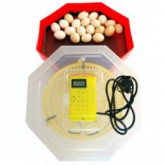 Incubator de oua cleo 5 TH - Incubator oua