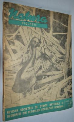 Revista natura biologie NR.  6 / 1966 foto