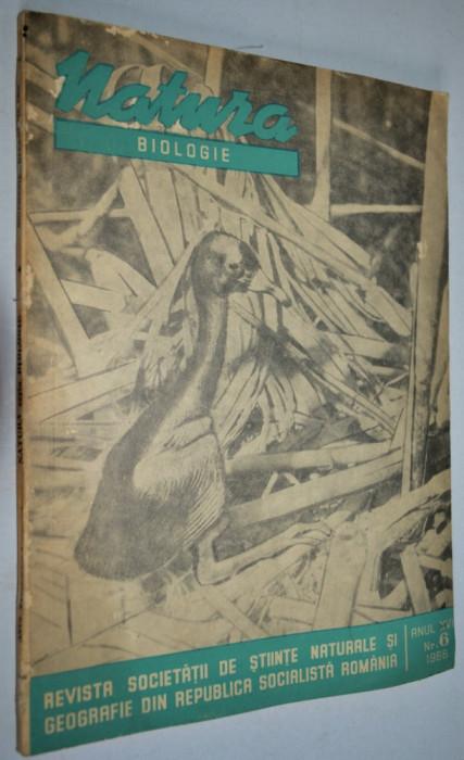 Revista natura biologie NR.  6 / 1966 foto mare