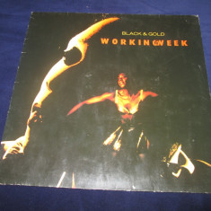 Working Week ‎– Black & Gold _ vinyl(LP, album) Germania - Muzica House Altele, VINIL