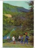 CPI (B7429) CARTE POSTALA - VALEA OLTULUI LA TUSNAD, Circulata, Fotografie