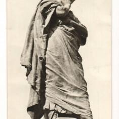 CPI (B7411) CARTE POSTALA - CONSTANTA. STATUIA LUI OVIDIU - Carte Postala Dobrogea dupa 1918, Necirculata, Fotografie