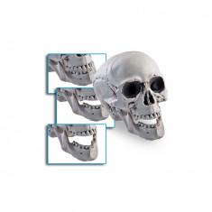 Craniu decorativ Halloween - Carnaval24 - Decoratiuni petreceri copii