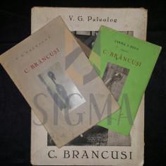 V. G. PALEOLOG - CONSTANTIN BRANCUSI (TREI CARTI DESPRE C. BRANCUSI) - Carte de colectie