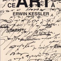 Erwin Kessler - ceARTa - 679679 - Eseu