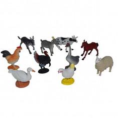 Set 10 animale domestice si pasari de curte - Figurina Animale