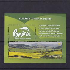 ROMANIA 2010, LP 1874, ROMANIA-GRADINA CARPATILOR COLITA DANTELATA MNH - Timbre Romania, Nestampilat