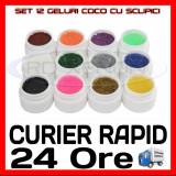 KIT SET 12 MODELE GEL GELURI COCO CU SCLIPICI PT LAMPA UV COLORATE 5ML (8G), Gel colorat