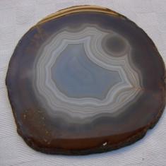 Frumoasa felie de agat nuanta maro avand cu diametrul de 12 cm - Fosila roca, Agata
