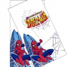Fata de masa Spider-man