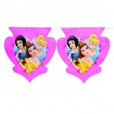 Banner stegulete Princess Heart - Decoratiuni petreceri copii