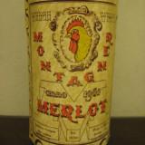 Rare MERLOT, montagner, recoltare 1962 cl 67, 5 gr 12, 5-A-96 - Vinde Colectie, Aroma: Sec, Sortiment: Rosu, Zona: Europa