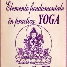 Elementele fundamentale in practica yoga - Autor(i): Dan Bozaru - Carte paranormal
