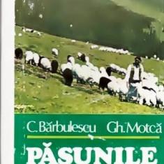 Pasunile Muntilor Inalti - Autor(i): C.Barbulescu, Gh. Motca