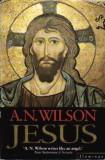 Jesus - Autor(i): A. N. Wilson