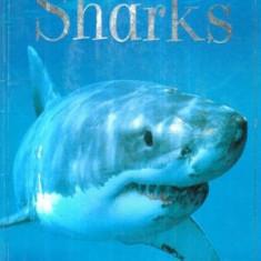 Sharks - Autor(i): Jonathan Sheikh Miller