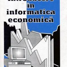 Introducere in informatica economica - Autor(i): colectiv - Carte Administratie Publica