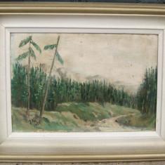 Tablou pictat ulei pe panza Peisaj Padure de brazi 1985 - Pictor roman, Peisaje, Realism