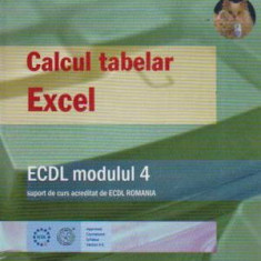 Calcul tabelar Excel - ECDl modulul 4 - Autor(i): ECDL - Carte baze de date