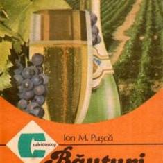 Bauturi spumante in gospodarie - Autor(i): Ion M. Pusca