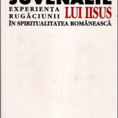 Experienta rugaciunii lui Iisus in spiritualitatea romaneasca - Autor(i): Juvenalie Ionascu - Carti Crestinism