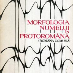 Morfologia numelui in protoromana (romana comuna) - Autor(i): Ion Coteanu