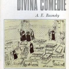 Botticelli - Divina comedie - Cabinetul de stampe - Autor(i): Anatol E. - Album Arta