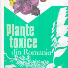 Plante toxice din Romania - Autor(i): Valeriu Zanoschi, Eugen Turenschi, Mihai Toma