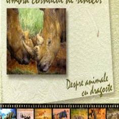 Umbra cornului de rinocer - Despre animale cu dragoste - Autor(i): Alexandru