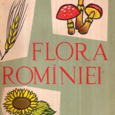 Flora Romaniei - Autor(i): Ion Simionescu