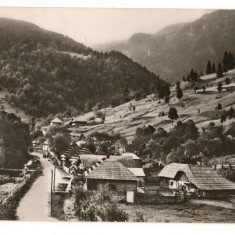 CPI (B7510) CARTE POSTALA - BORSA. PEISAJ LA GURA FANTANII, 1967 - Carte Postala Maramures dupa 1918, Circulata, Fotografie